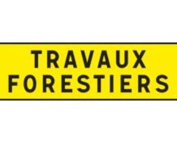 Travaux forestiers